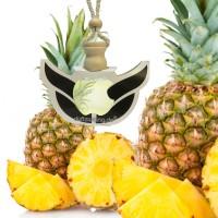 Autoparfüm MEGA verschiedene Sorten Autoduft Parfum Anhänger Raumduft Lufterfrischer Duft für Auto
